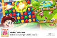 Cookie-Crush-Crazy-Cute-Brain-Challenger!