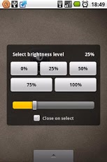 Brightness Level