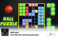 Ball-Puzzle-Time-Killer-Puzzle